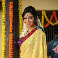 Vimala raman in yellow saree stills