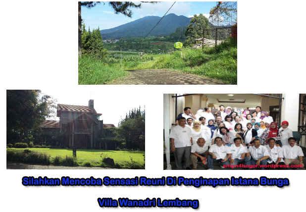 Image Result For Villa Istana