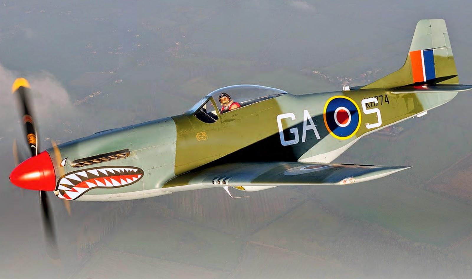 P 51 Mustang P 51 Mustang Shark Mouth