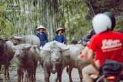 Voyage en Moto à Dien Bien Phu.