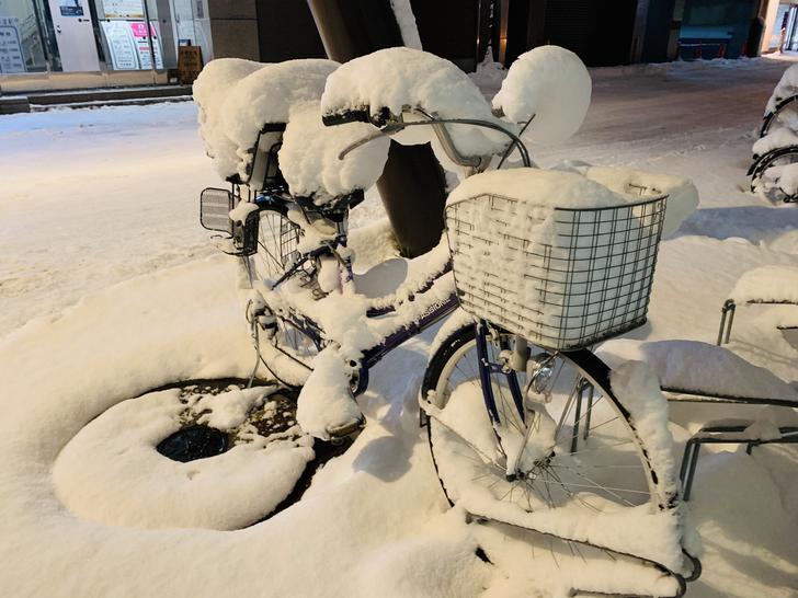 北海道的第二天
