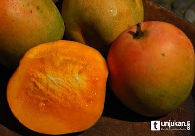 Manfaat Kulit buah mangga yang belum pernah anda ketahui