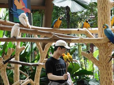 wisata di singapore