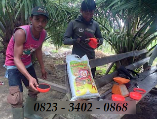 AGEN NASA DI Giri Mulya Bengkulu Utara - TELF 082334020868