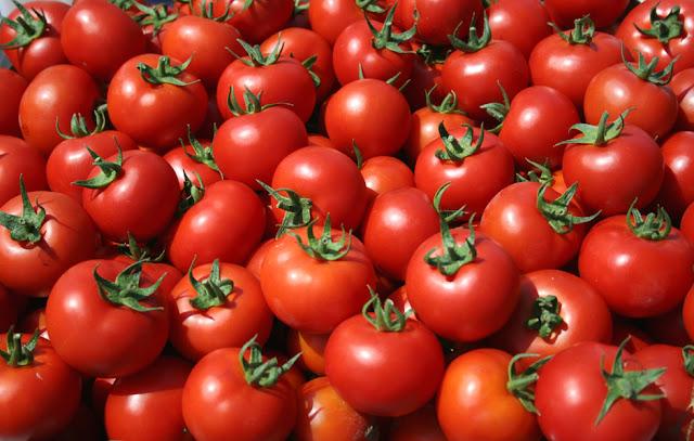 Δεσμεύτηκαν 41 τόνοι ακατάλληλης ντομάτας που θα έφταναν στα πιάτα μας