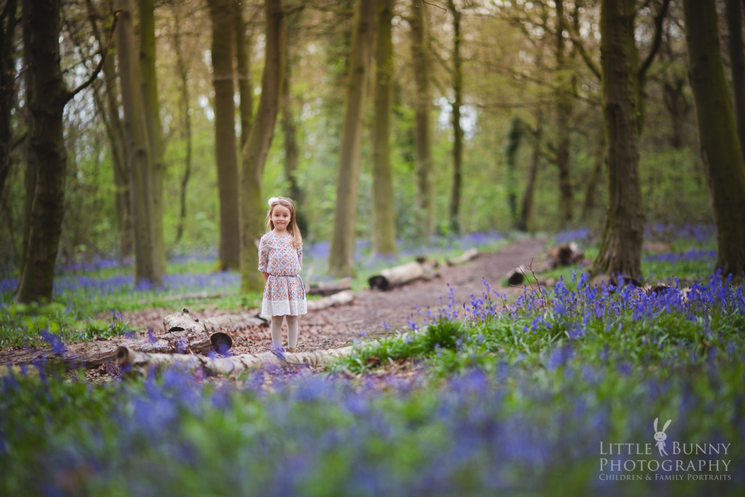 Bluebell child mini sessions
