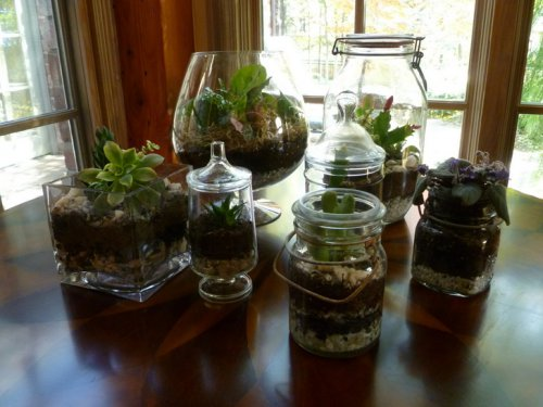 DIY easy and simple terrarium ~ easy arts and crafts ideas
