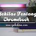 Sekilas Tentang Chromebook C201