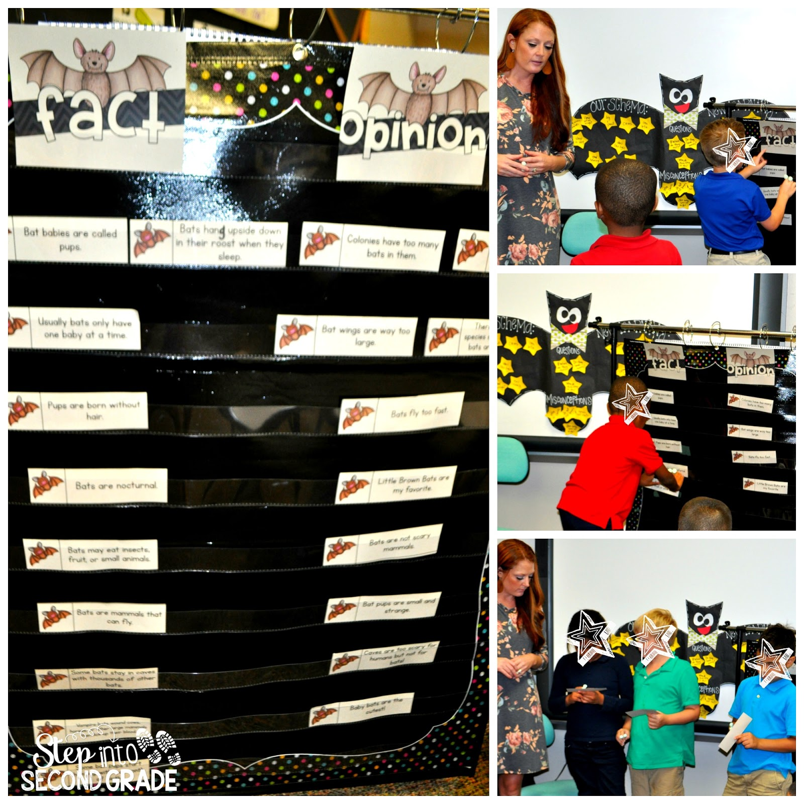 Step Into 2nd Grade With Mrs Lemons Finding Bat Facts