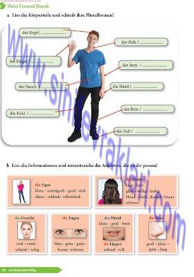 9. Sınıf Almanca A1.1 Ders Kitabı Cevapları Sayfa 36