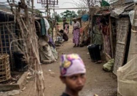 125 Muslim Rohingya Asal Myanmar di Usir Blanglades
