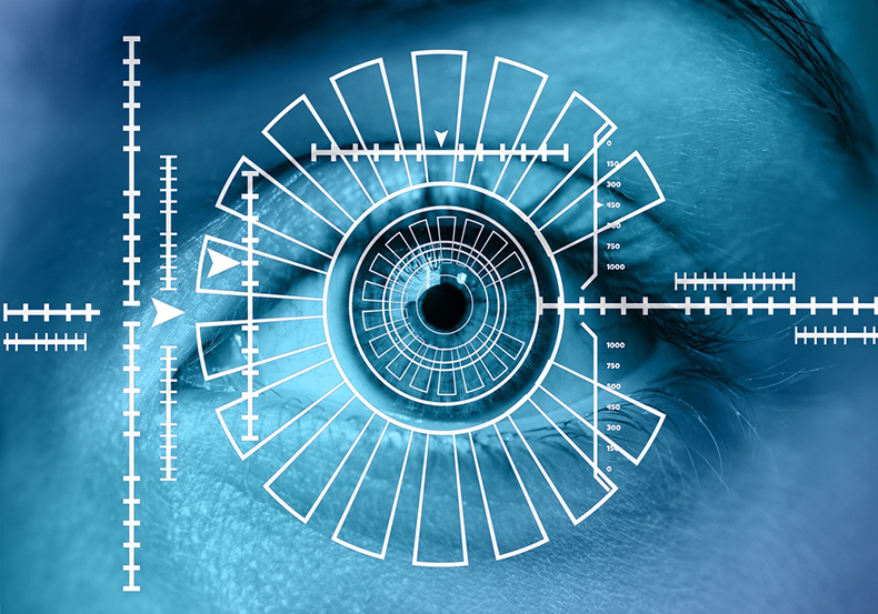 Eyes scanning - user and asset authentication Analecta Cyber