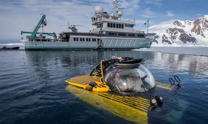 Κατάδυση στον βυθό της Ανταρκτικής αποκαλύπτει έναν άγνωστο υποθαλάσσιο κόσμο (βίντεο)