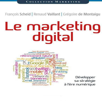 Le marketing digital. Développer sa stratégie à l'ère numérique (collection Marketing) PDF