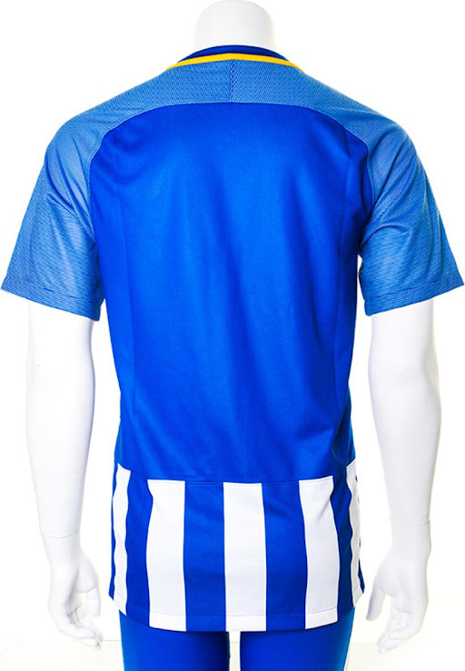 ebb0e2ea463 Brighton   Hove Albion 17-18 Home Kit. This is the Nike Brighton home  jersey for the 2017-2018 Premier League season. +2. 3 of 3