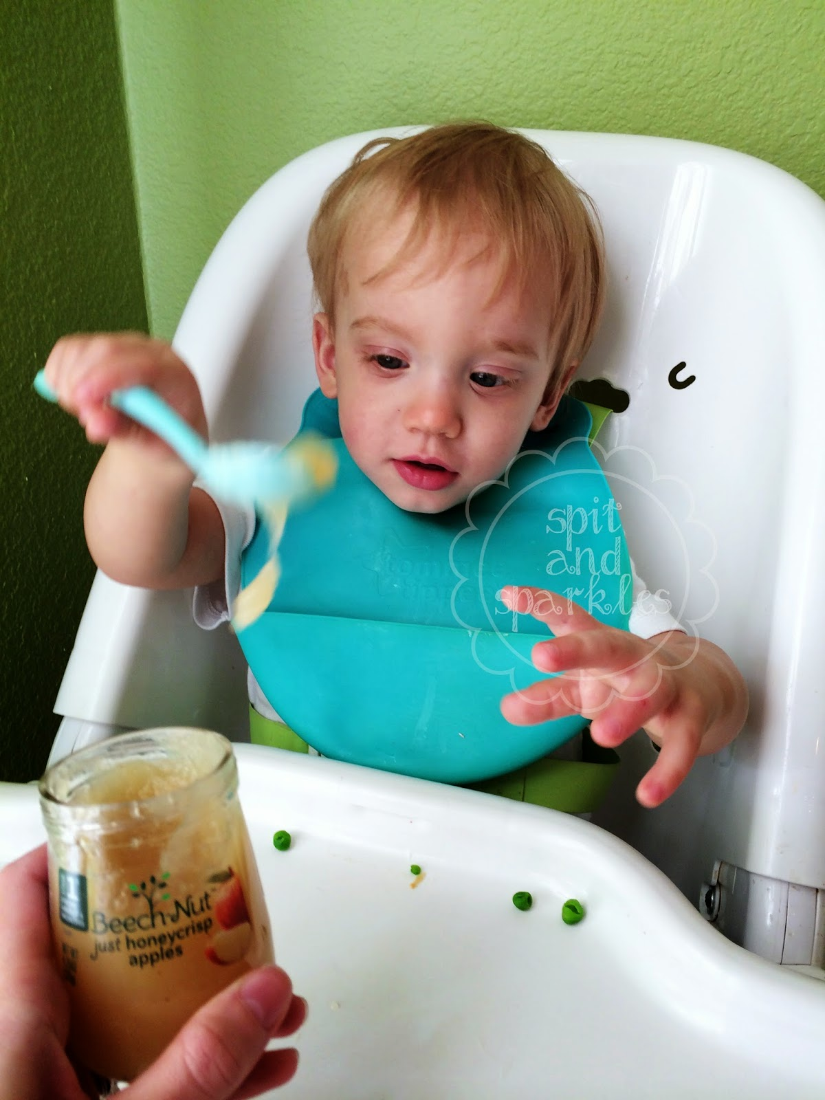 Real Food For Babies By Beech Nut Product Review