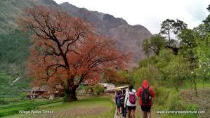 Village walk.