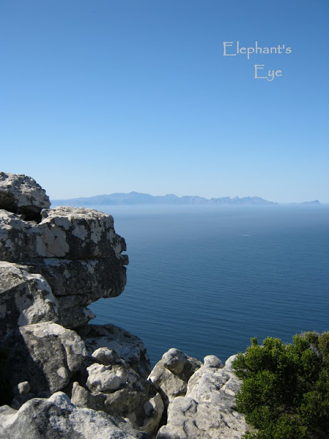Elsies Peak looking across False Bay