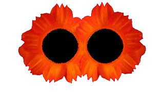 4 Moldura flor simples 2 fotos png