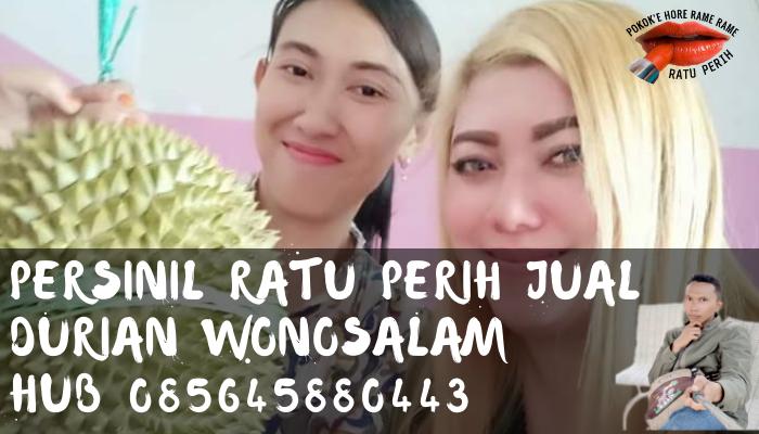 Durian wonosalam jombang
