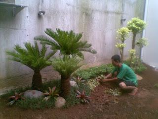 penanamanpohonantingputri