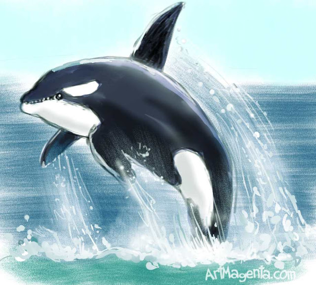 Killer Whale by ArtMagenta