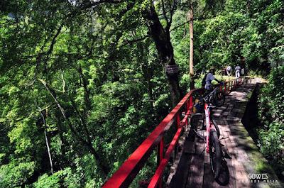 foto jembatan romantis curug lawe semarang