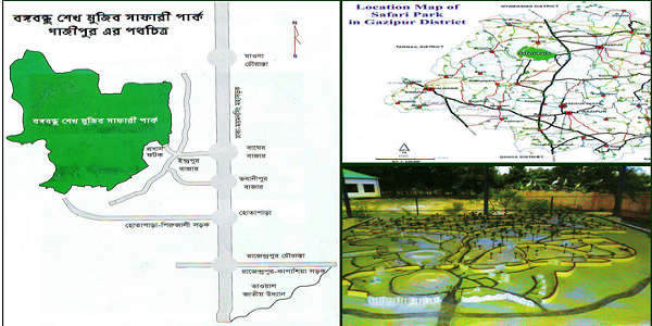 Bangabandhu Safari Park Address and Contact Information