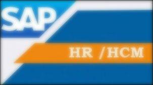 ¿Qué es SAP HR y para qué sirve? - Consultoria-SAP