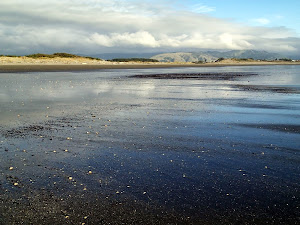 Otaki Beach, low tide, looking east to the Tararua Ranges