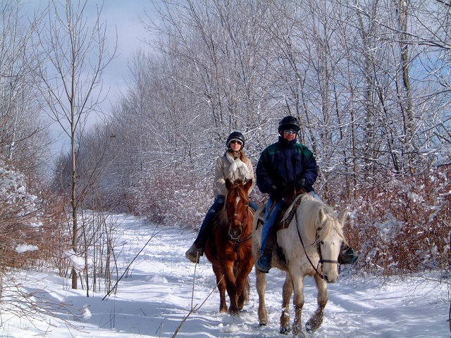 Horse Riding in Kashmir
