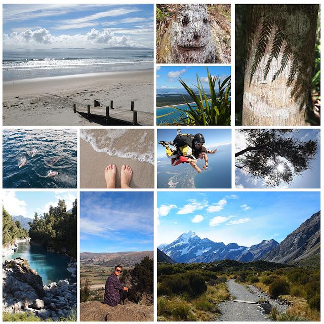 http://www.lilikus.be/2015/10/la-nouvelle-zelande-cinq-mois-apres.html