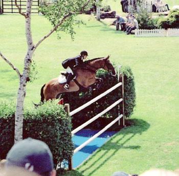 Eurovans Ltd: Hickstead Horse Show June 23rd - 26th - We ...