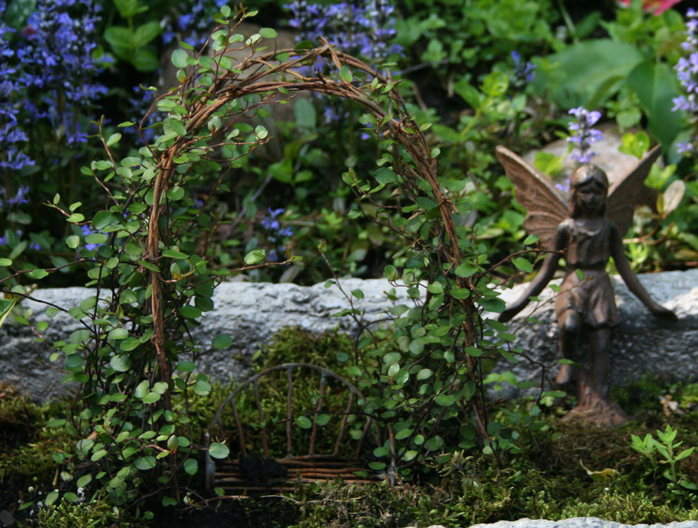 Garden Fairy: Life In A Canned Ham: Fairy Gardens