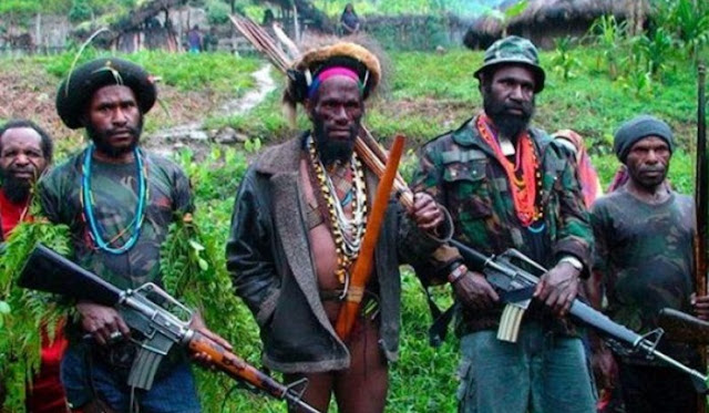Siapa KKB Papua yang Bunuh 31 Pekerja Trans Papua?