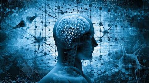 Eddig ismeretlen részekre bukkantak az emberi koponyában