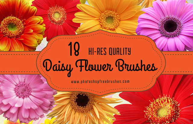 18 Daisy Flower Photoshop Brushes