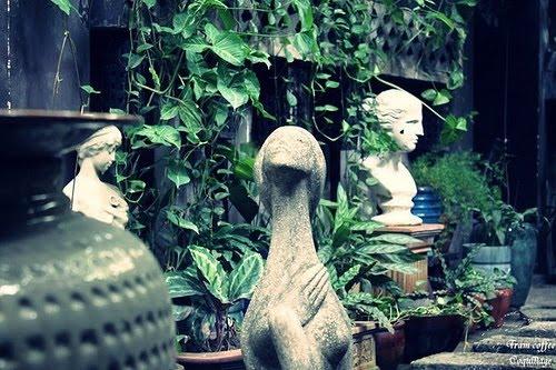 10 quán cafe biệt thự sân vườn đẹp như mơ ở nam s24g