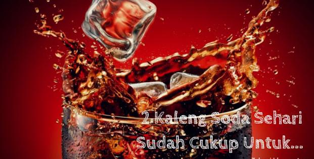 SEBAIKNYA ANDA TAU 2 Kaleng Soda Sehari Sudah Cukup untuk Hancurkan Ginjalmu!!