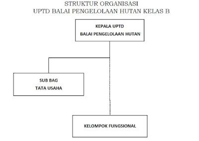 Struktur organisasi UPTD Balai Pengelolaan Hutan Kelas B