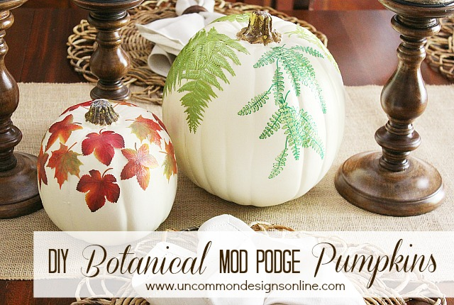 Botanical mod podge pumpkins are a simple fall craft from Uncommon Designs that anyone can do