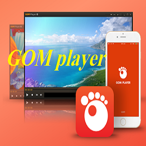gom player free download 2018