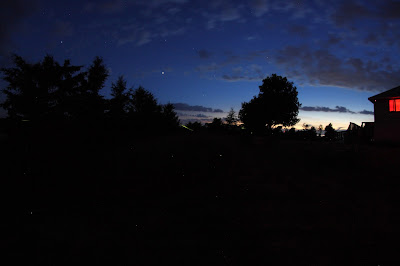 fireflies and planets at sunset