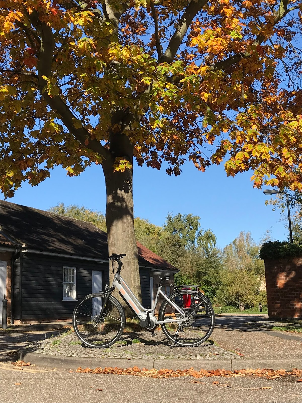 Batribike electric bicycles: 2018