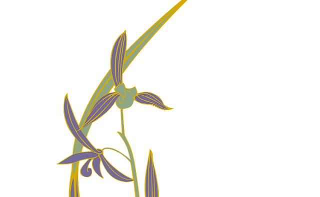 Abejera de Almaraz: Ophrys almaracensis