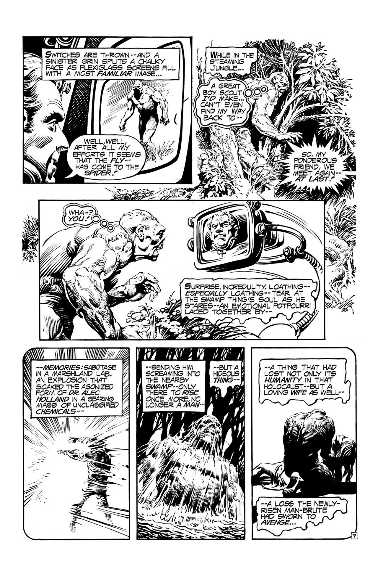 Swamp Thing (1972) Issue #17 #17 - English 8