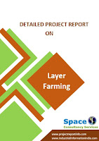 Project Report on Layer Farming