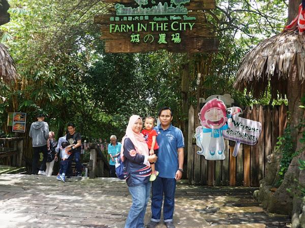 Farm In The City : Kenalkan Anak Dengan Haiwan.
