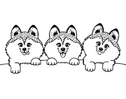 25 Desenhos Fofos De Cachorros Ou Pet Para Colorir Pintar