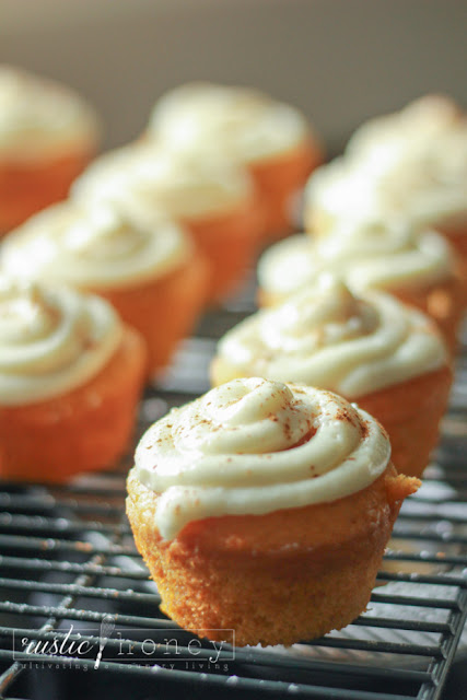pumpkin spice cupcakes cream cheese frosting